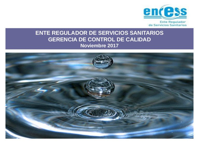 Estado de Situacion de los Servicios de Agua Potable en la Provincia de Santa Fe