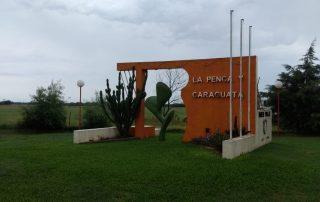 La Penca Y Caraguatá